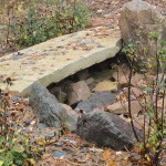 Large flat rock used as stepping stone bridge