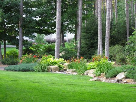 garde, plants, landscape, decorative rock
