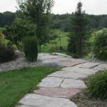 path, walkway, landscape