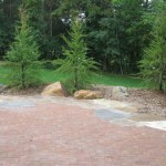 paver, rocks, trees, plants, landscape