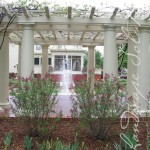 View of fountain through pergola