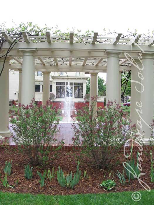 View of fountain through pergola