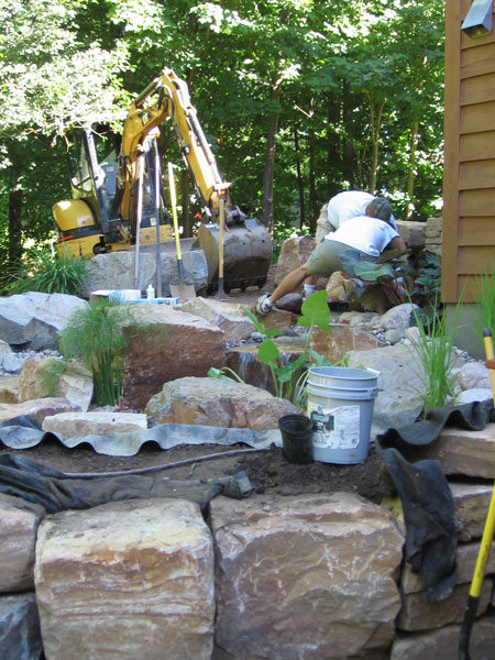plants, rocks, dirt, landscape, equipment