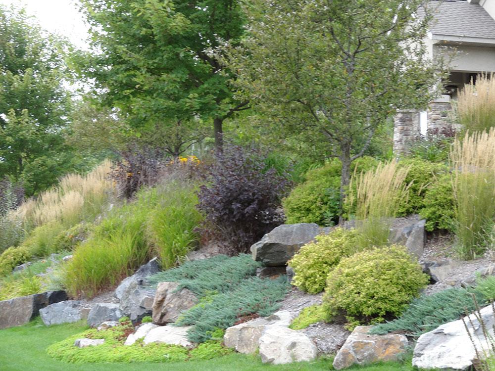 Backyard Patio with Water